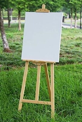 Boards & Canvas